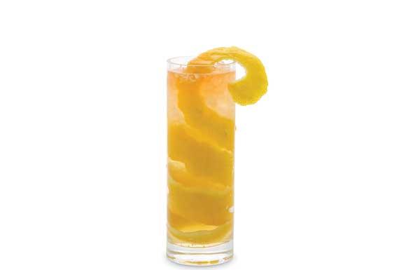 Ricetta e Preprazione Cocktail Horse's Neck