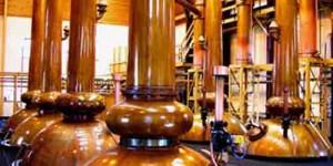 Rettificazione dei Distillati